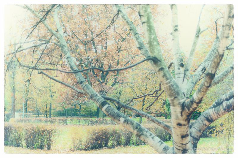 Jesienny spacer - fotograf warszawa-13
